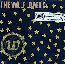 The Wallflowers: Incontrera down the Horse/CD