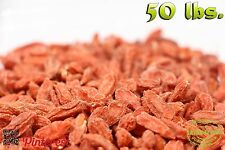 800oz of Bulk Superfruit Immunity Enhancer Goji Wolf Berries [50 lbs.]