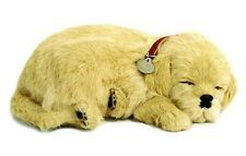 Perfect Petzzz Golden Retriever puppy Plush battery powered breathing toy