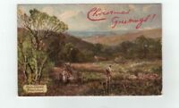 Antique Tuck Glitter Trimmed Post Card Greetings from Haslemere Blackdown