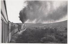 ORIG. foto 17cmx13cm locomotiva a vapore su Agfa Brovira carta (agf347)