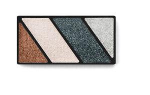 NEW Mary Kay Black Ice Mineral Eye Color Quad / Eye Shadow 1.25g