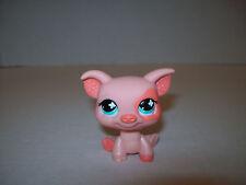 Littlest Pet Shop~#1220~Pig~Peach Orange Eye Patch~Polka Ears~Green Flower Eyes