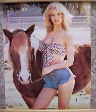 Rare vintage DOROTHY STRATTEN Playmate poster - pin up - 1979 New in sleeve MINT