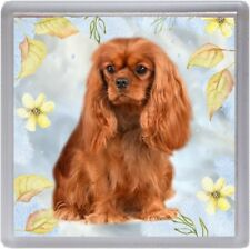 Cavalier King Charles Spaniel (Ruby) Dog Coaster No 12 by Starprint