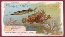 Chromo CHOCOLATERIE D'AIGUEBELLE - 230613 - poissons - hémiramphe pélor