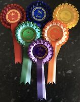 1st-6th 2 tier  horse show rosettes Large 68mm Centres  *FREE 1st Class POSTAGE*