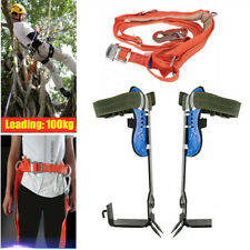 Adjustable Tree Climbing Spike Spurs& Safety Belt Straps Rope for Climbing Trees
