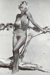 Vintage 1960's Art photography Nude Woman 4X6 Photo Model Pin Up 51312323598