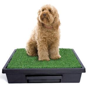 PetSafe Pet Loo Portable Pet Toilet Small Dogs, Cats, Rabbits, Guinea Pigs