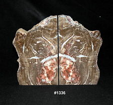 "Exquisite Petrified Wood Bookends 13 7/8"" wide, 11""tall, 1 7/8"" thick, 22 lbs."