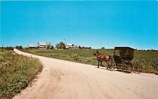 Amish Horse and Buggy Kalona Iowa Cheese Plant Twin County Dairy Postcard