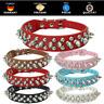 ★ Edles Hundehalsband mit Nieten   TOP Qualität   in 4 Farben  