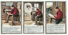 """Set of 3 Bamforth Song Cards """"Give my Love to Scotland Maggie"""", unposted, 4702"""
