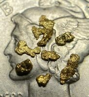 Ten Quality Alaskan Natural Placer Gold Nuggets 18 to 16 Mesh Free Shipping!