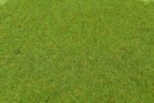 WWS Spring Static Grass 2mm 500ml Tub Wargames Trains Modelling