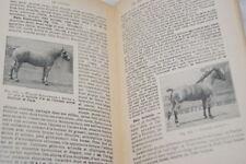 LE CHEVAL FRAISSE ELEVAGE PRODUCTION ACHAT ILLUSTRE 1952