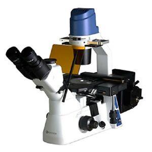 OX.2453-PLF Euromex trino inverted microscope for bright field fluorescence