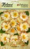 Canvas Textured BRIAR ROSE - IVORY 12 Fabric Flowers 40-45mm & Leaves 5008 Pet A
