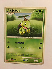 Pokemon Card / Carte Turtwig Promo 005/DP-P