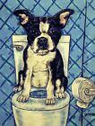 BOSTON TERRIER in the bathroom wall art dog pet art  13x19  GLOSSY PRINT