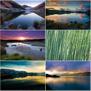 5*3ft Natural Background Studio Photography Backdrop Prints Decor Sunset Trees