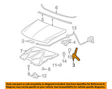 GM OEM Hood-Assist Spring Right 15035592