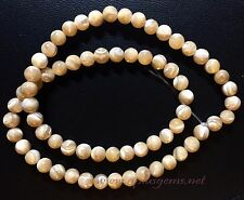 Natural Beige Mother of Pearl Shell Beads 6mm  Round  Beads