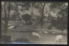 REAL PHOTO Postcard CRICH ENGLAND  Holy Well Field & Large Church 1910's