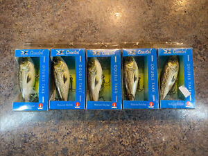 Lot If 5 H2O XPRESS DOUBLE TAKE LURE - NATURAL MULLET COLOR