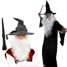 WIZARD CLOAK WITH WHITE WIG AND BEARD SET COSTUME MAGICAL FILM PROF FANCY DRESS