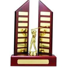 Perpetual Trophy 30cm Timber Veneered