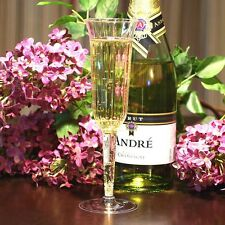 (120 count) - WEDDING PLASTIC WINE CLEAR CHAMPAGNE FLUTES DISPOSABLE GLASSES!