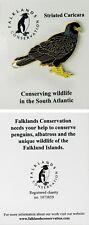 RSPB Pin Badge   striated caricara Falklands Conservation