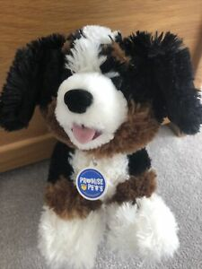 Build A Bear Promise Pet Burmese Mountain Dog in VG Used Cond RRP £20