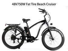 SOHOO 48V750W16AH Beach Cruiser Electric Bicycle Fat Tire E-Bike Mountain Bike