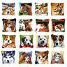 DIY Rabbit Cat Dog Wolf Latch Hook Kit Rug Pillowcase Cushion Embroidery Carpet