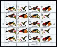 USA**TROPISCHE VOGELS-COLIBRI-HONEYEATER-VEL 20zgls-1998-Oiseaux-Birds-Aves