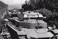 WW2 - Pologne 1939 - Panzer II allemands avec canon de 20 mm
