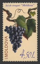 Moldova 2009 Plants Grape MNH stamp