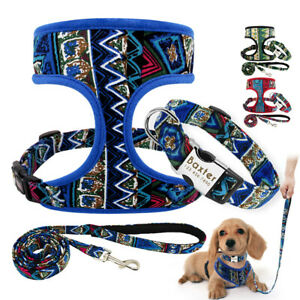Nylon Dog Harness &Personalised Dog Collar & Lead set for Chihuahua Pug Labrador