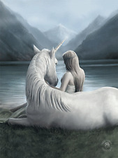ANNE STOKES ART BEYOND WORDS UNICORN - 3D FANTASY PICTURE PRINT LARGE 300x 400mm