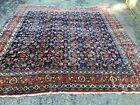 """Antique Oriental Rug - India - Wool Hand Knotted-Navy-10'7""""x9'10"""""""