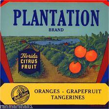 Lucerne Florida Plantation Orange Citrus Fruit Crate Label Art Print