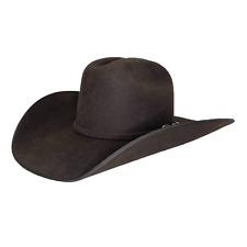 Resistol Longhorn Chocolate Brown Felt Cowboy Hat RWLGHNB684222