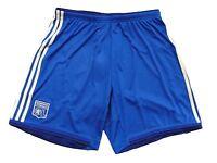 Adidas Olympique Lyon  Hose / Short blau Gr.L