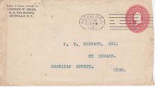 POSTAL HISTORY - 1901 GEORGE W. READ BUFFALO NY CORNER CARD NICE CANCEL TO MICH.