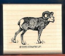 BIG HORN RAM Forest Wildlife Realistic Animal NEW Stampin' Up! 1995 RUBBER STAMP