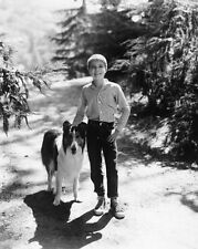 JON PROVOST UNSIGNED PHOTO - 5808 - LASSIE