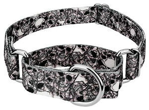Country Brook Petz® Phantom Skulls Martingale Dog Collar
